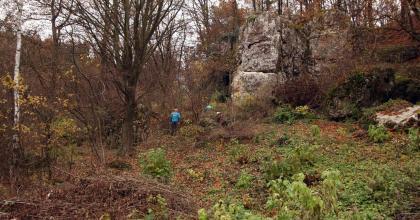 Jesienne sprzątanie w Dolinie Będkowskiej