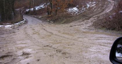 WSPINKA interweniuje w sprawie dewastacji w Dolinie Będkowskiej